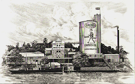 Image of Halmeg plant, by courtesy of Ryde Library Service